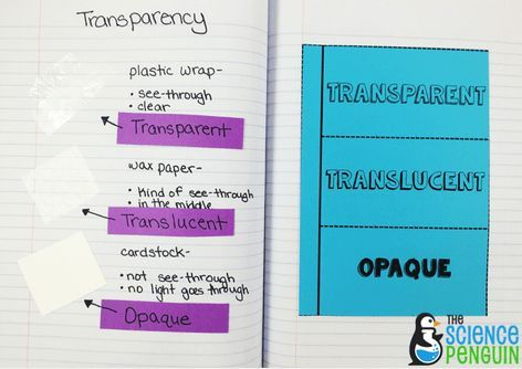 Energy Interactive Science Notebook Photos — The Science Penguin