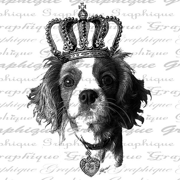 Cavalier King Charles Spaniel Heart Crown Dog Royal Digital Image