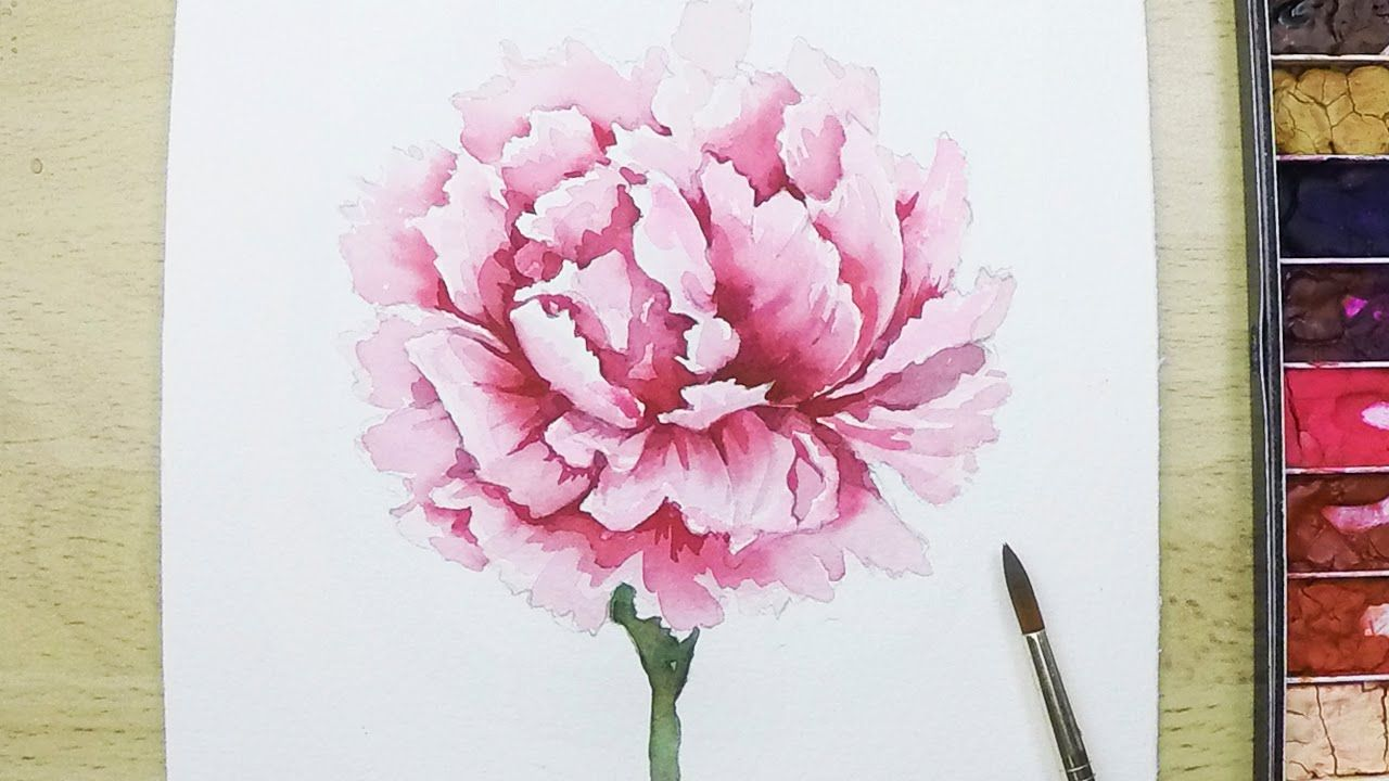 16 32 Lvl4 How To Paint A Carnation Flower In Watercolor Roses