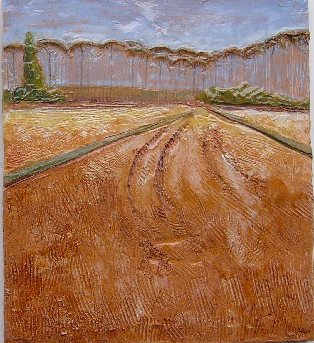 Risaie a Bestazzo - 2 The rice fields of Bestazzo -2