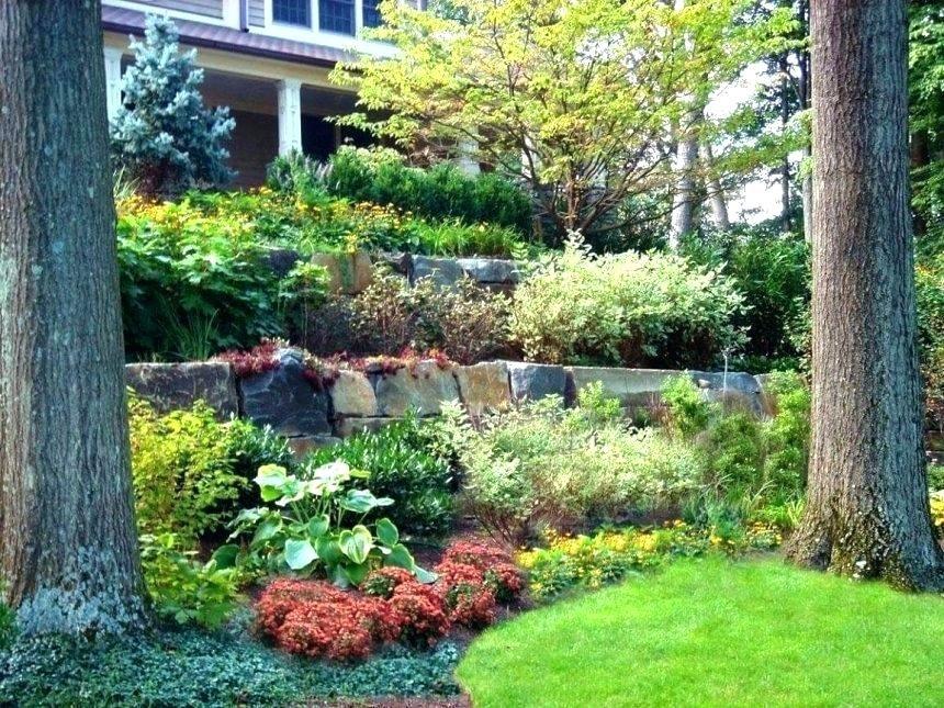 Image Result For How To Landscape A Steep Slope On A Budget Landscaping Retaining Walls Landscape Design Front Yard Landscaping Diy