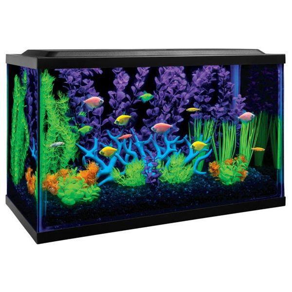 die besten 25 aquarium beleuchtung ideen auf pinterest aquariumbeleuchtung aquarium. Black Bedroom Furniture Sets. Home Design Ideas
