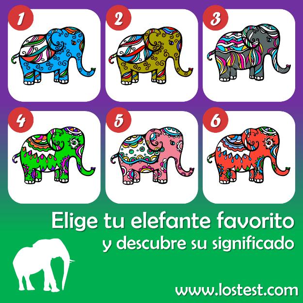 Los Test El Test De Los Elefantes De Todo Un Poco Facts
