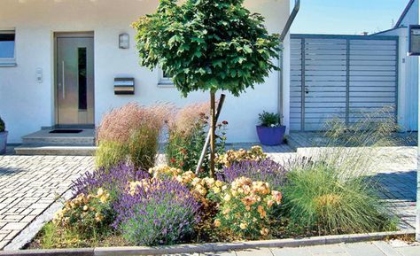Pflegeleichter Garten - vorgarten gestalten mit kies und grasern
