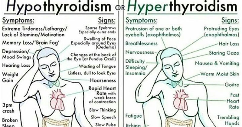 Everything You Need To Know About Every Thyroid Disorder Signs
