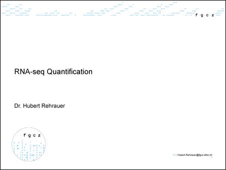 Rna Seq Quantification Presentation Research Projects Life
