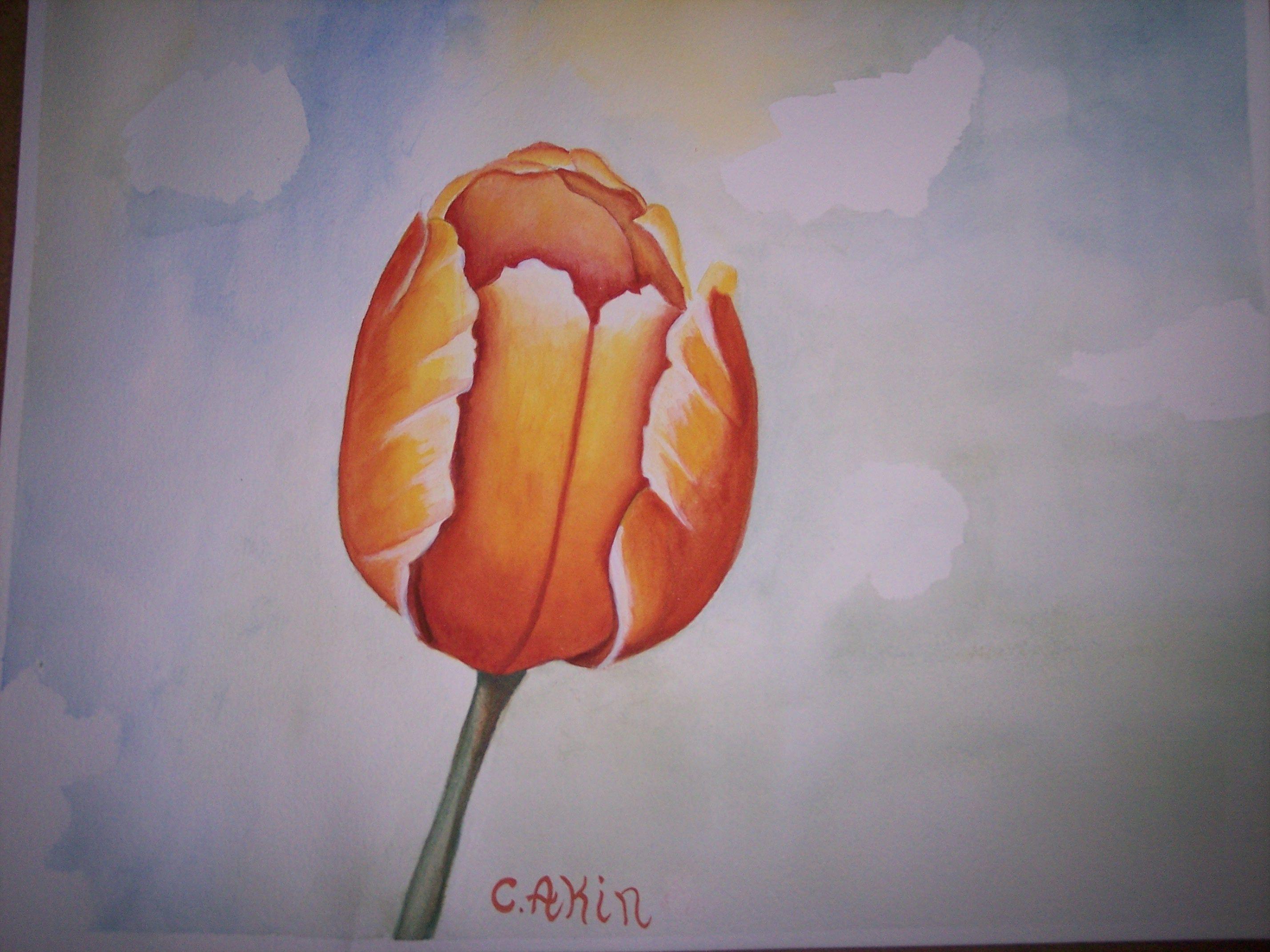 Watercolor Mini Course Free Designs Of Value On Line Art School