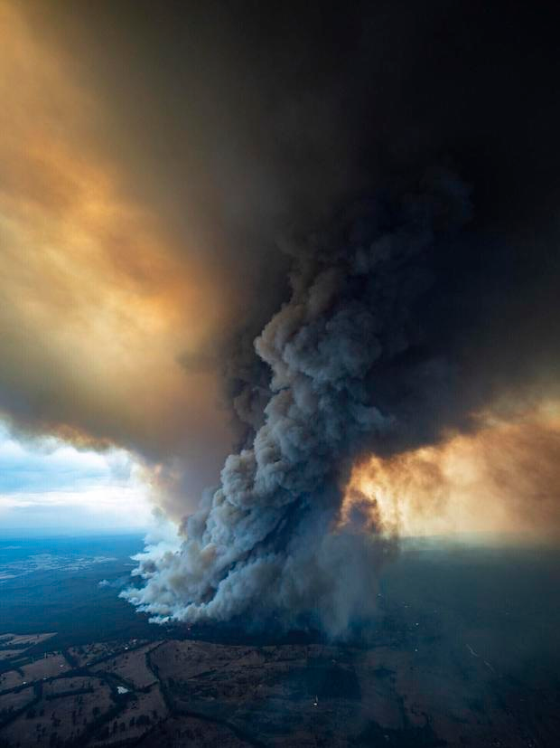 How to help victims of Australia's apocalyptic wildfires