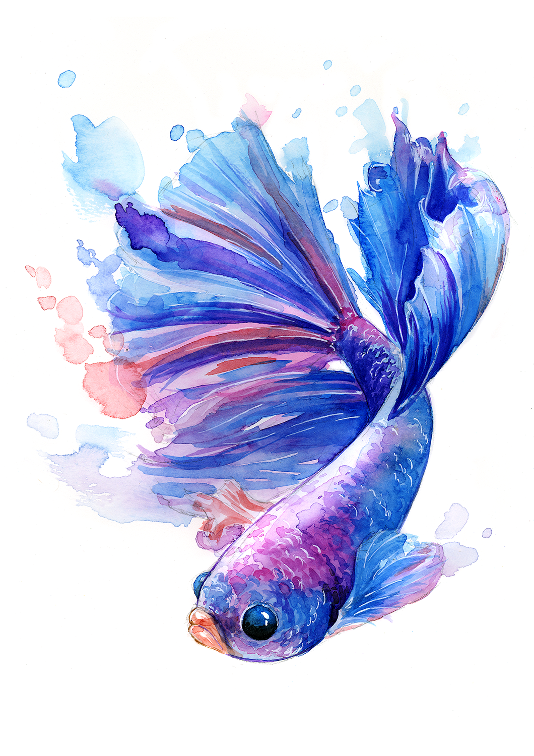 Betta Betta Betta Watercolor And White Ink A5 Art In 2020 Fish Painting Fish Art Fish Drawings
