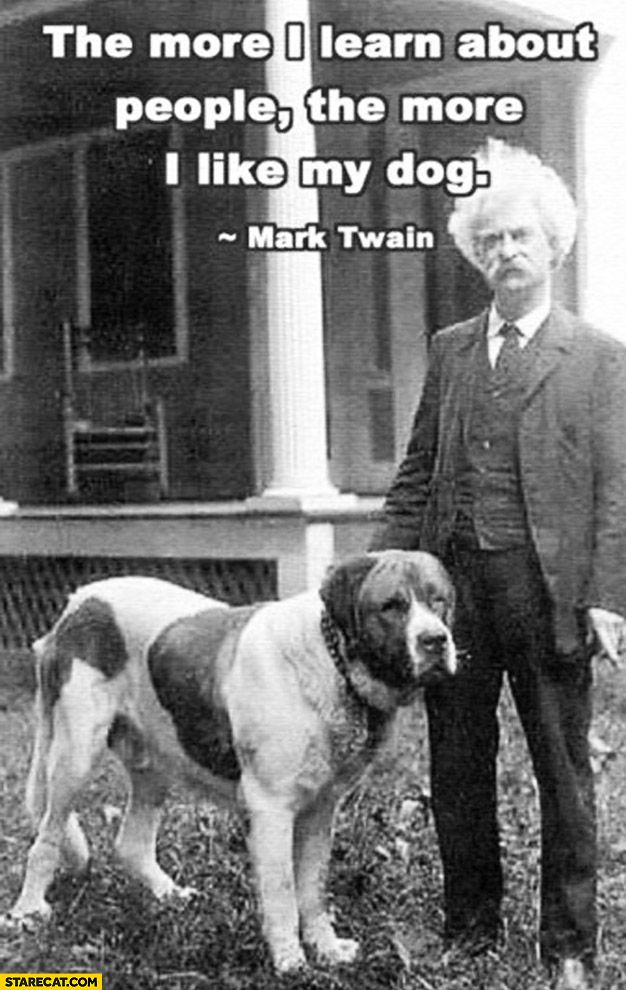 Mark Twain And His Lovely St Bernard With Quote Mark Twain Quotes I Like Dogs Words