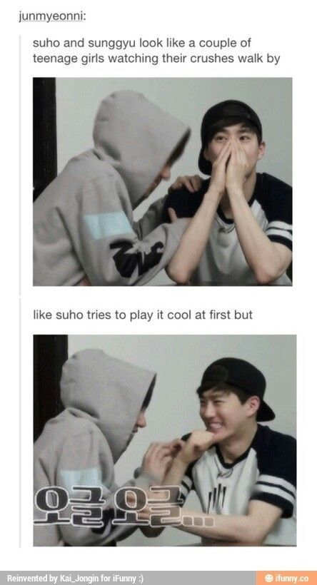 Image result for hot exo memes