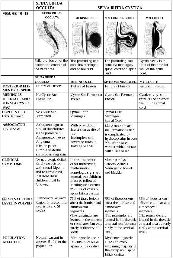 Really good overview of Spina Bifida Therapy Ideas Pinterest - school physical form