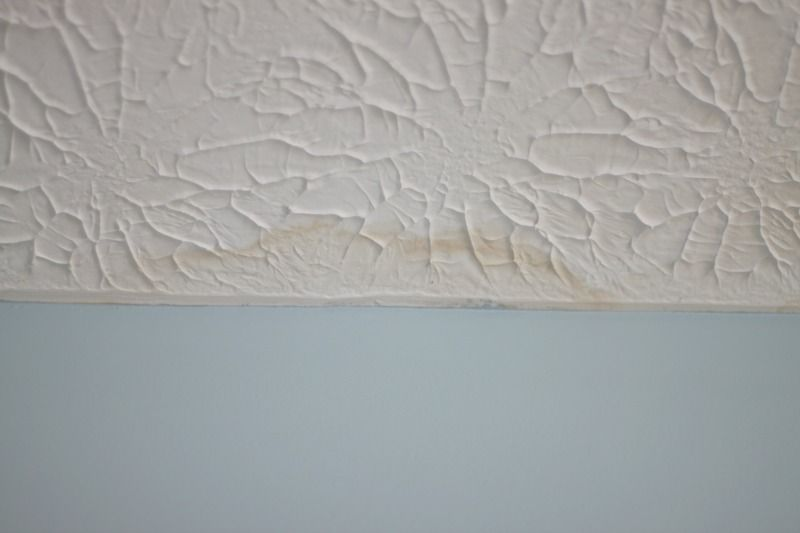 Learn How To Touch Up Textured Ceiling Paint in just a few minutes. Fix water stains and paint drips quickly and easily!