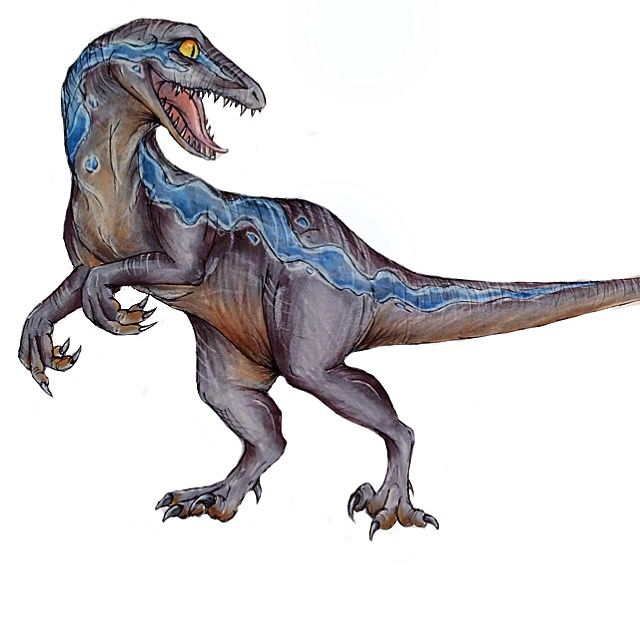 Some Quick Fan Art Of Blue From Jurassic World