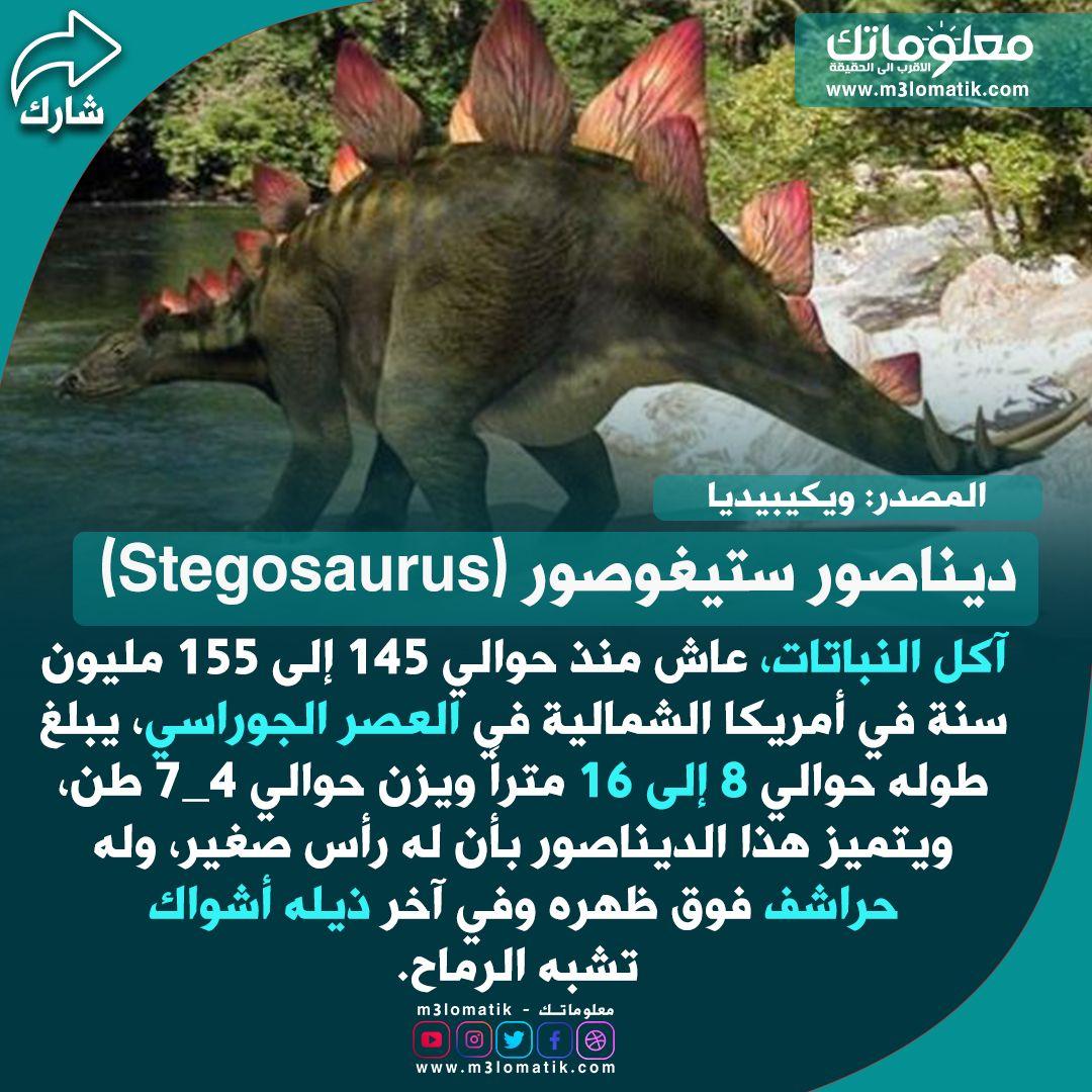 ديناصور ستيغوصور Stegosaurus Stegosaurus