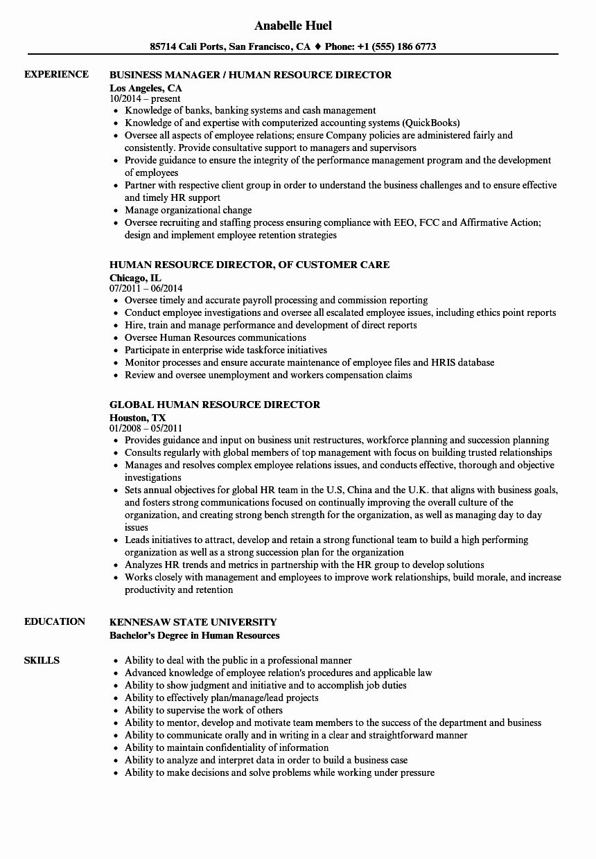 20 Human Resources Director Resume in 2020 (With images