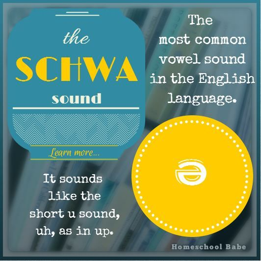 The schwa sound is the most common vowel sound in the English language. It sounds like the short u sound, uh as in up.