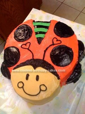 Homemade Ladybug Birthday Cake I Decided That Ladybugs Would Be The Theme Of My Daughters First Party Found Some Really Cute Themed