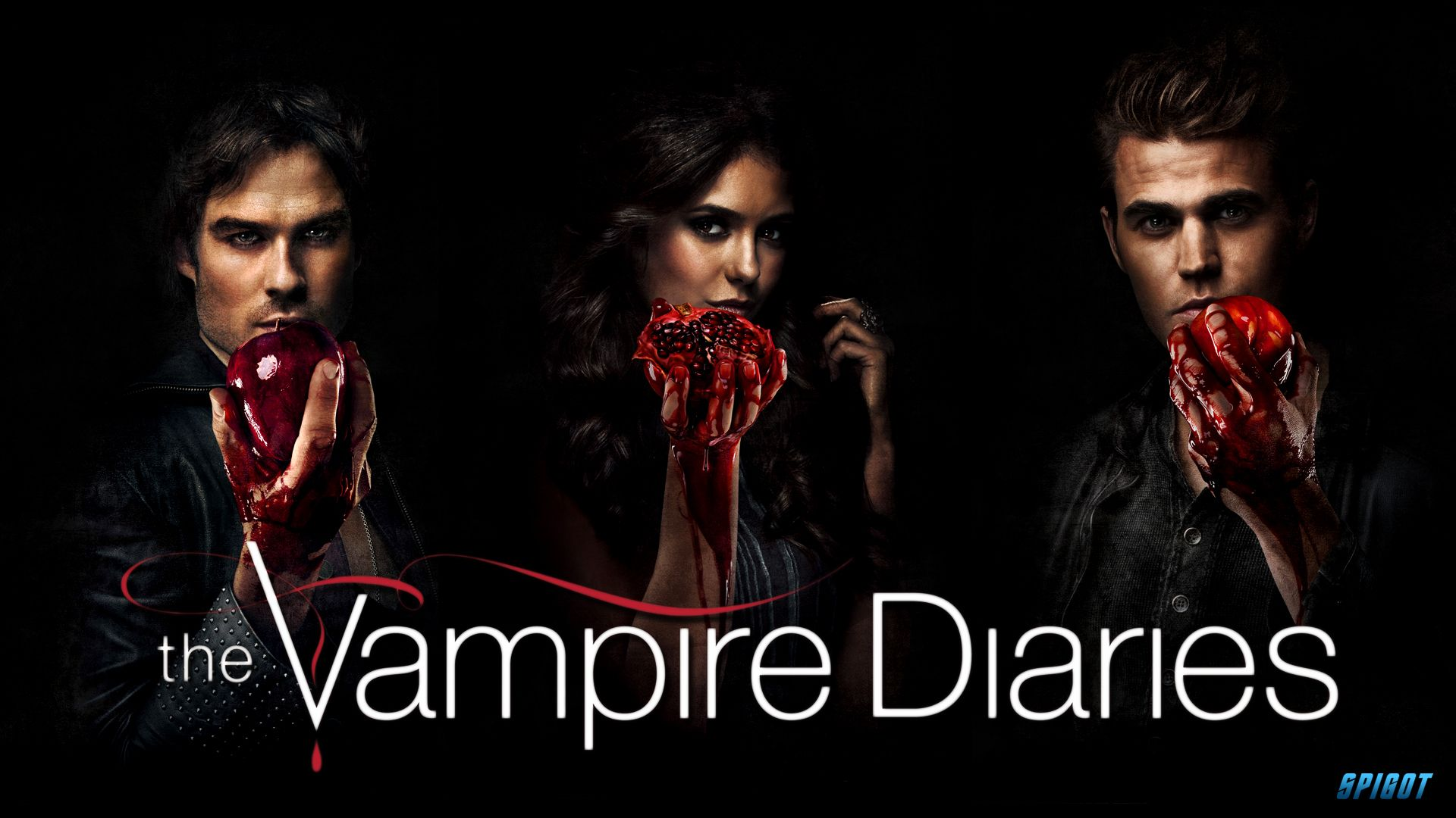 Pin By Megan Allen On The Vampire Diaries Vampire Diaries