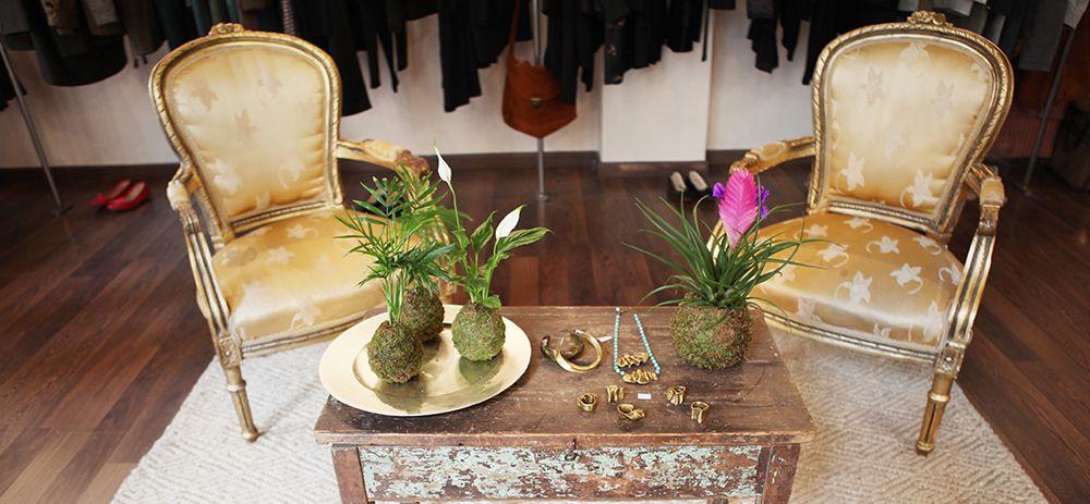 Plantapolis « Decoración natural. Ambientación de tienda de moda