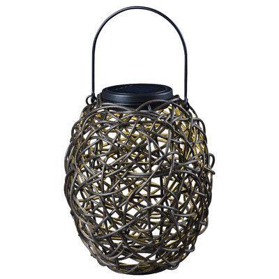 Wildon Home  Tangle Solar Hanging Lantern in Black