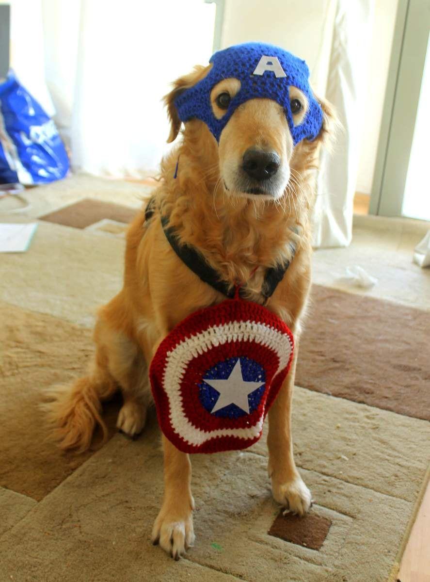 Captain America inspired crochet pet costume for large