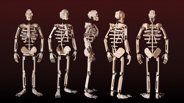 "Posable 22"" LEGO skeleton by Clay Morrow."