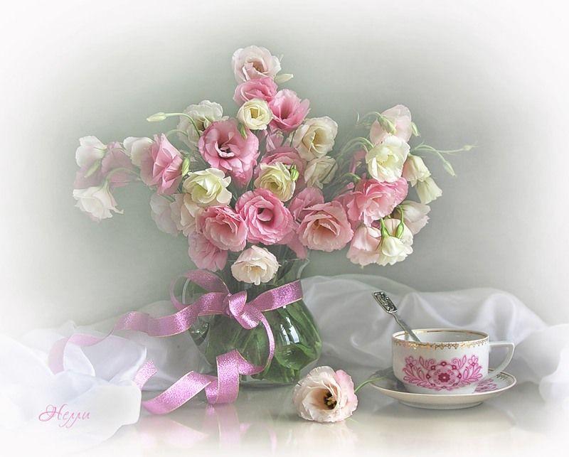 навсегда картинки нежные цветы с пожеланиями три языка отстоят
