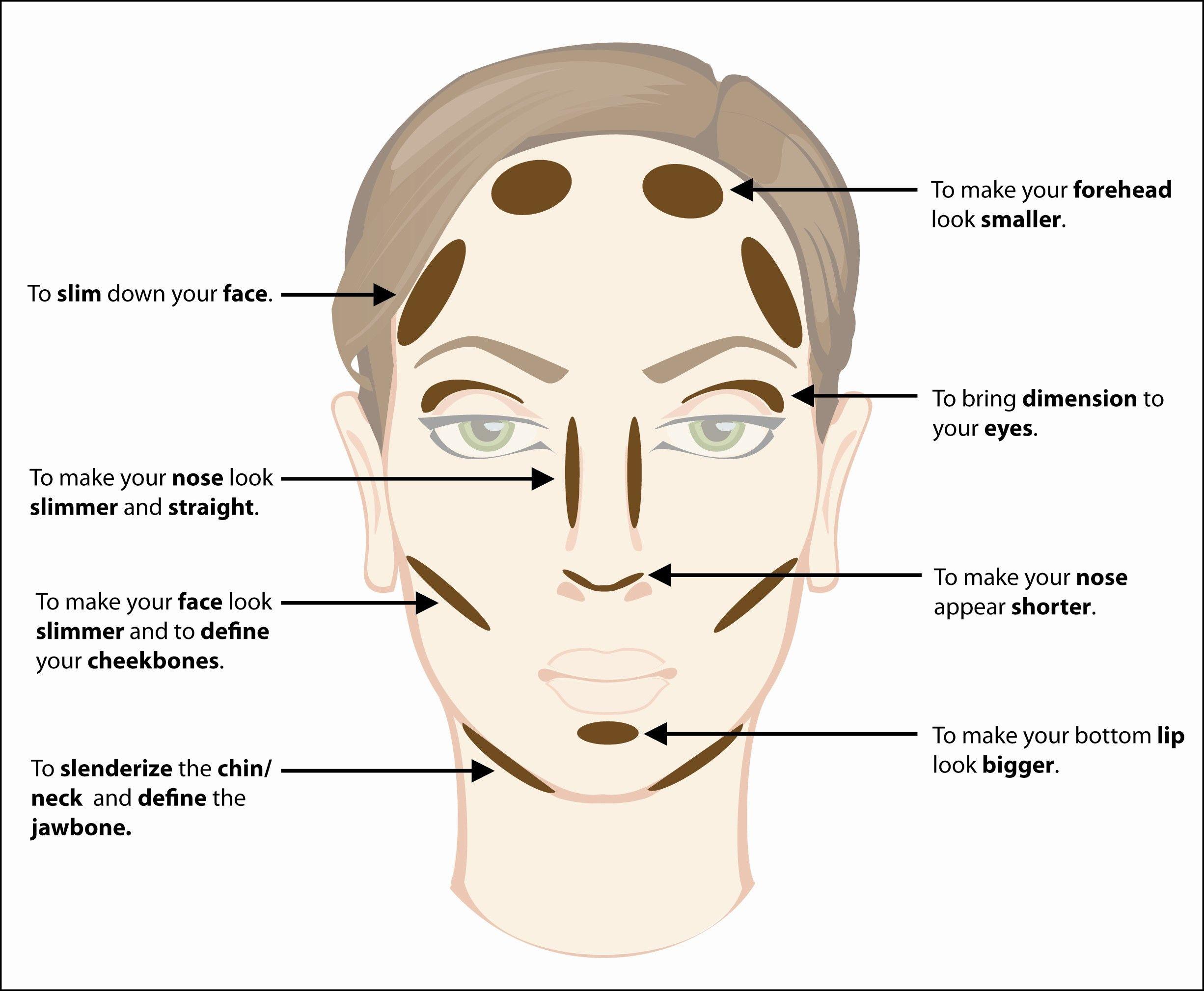How To Contour Your Face How To Contour Your Face Contouring And Highlighting Skin Makeup