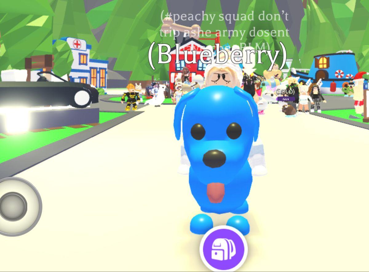989a10b4ff28d0488062b8450b2a35ff - How To Get A Neon Blue Dog In Adopt Me