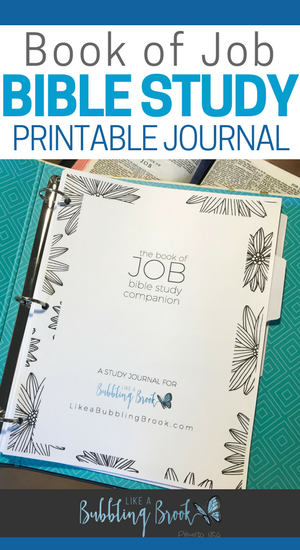 The JOB Bible Study Companion (Printable Journal) | Traduzir para ...