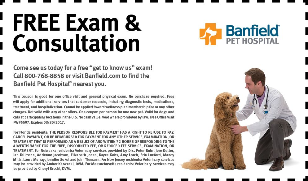 Banfield Paid Search Coupon Pet Health Care Health Care