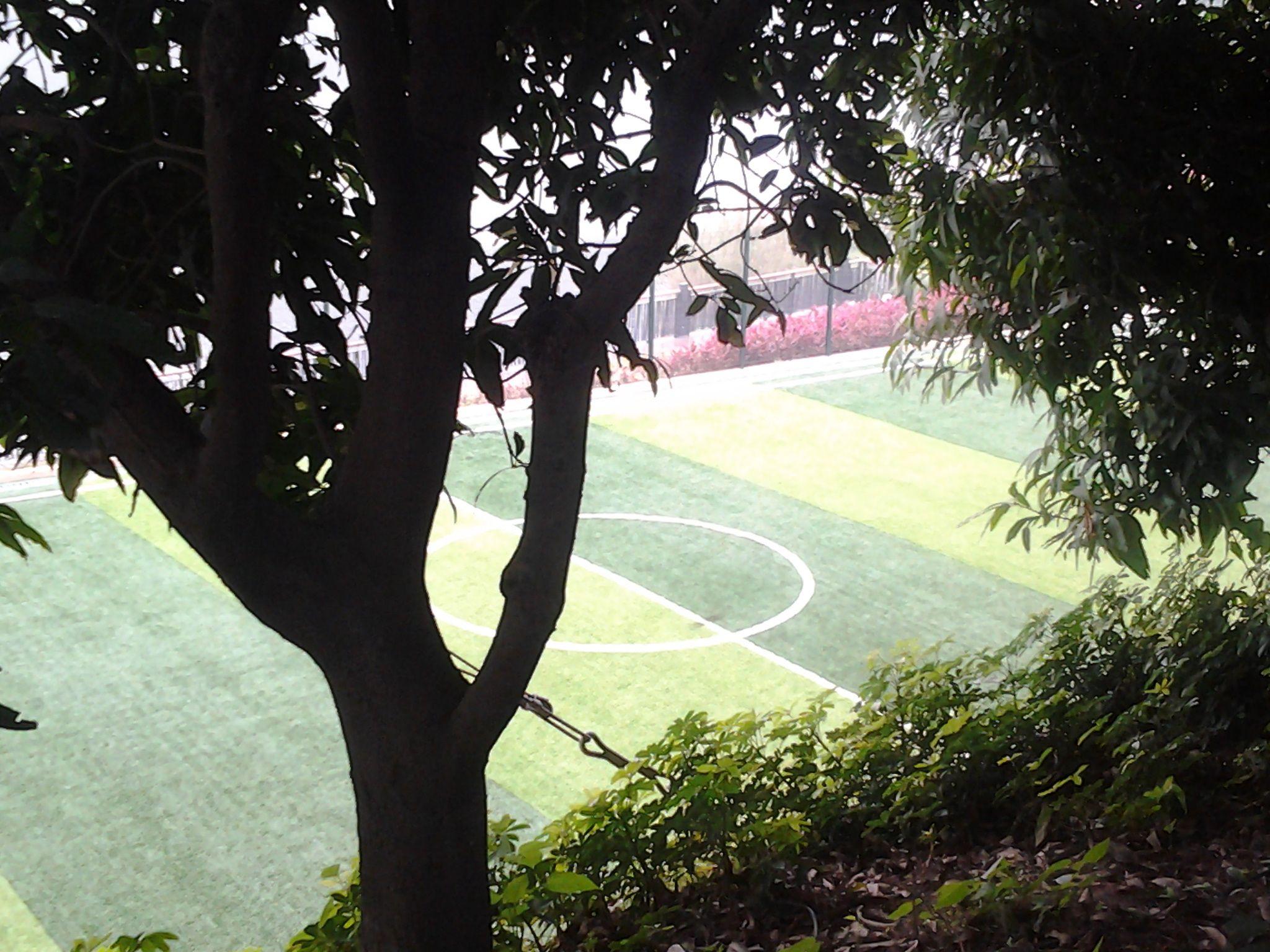 Sportfields