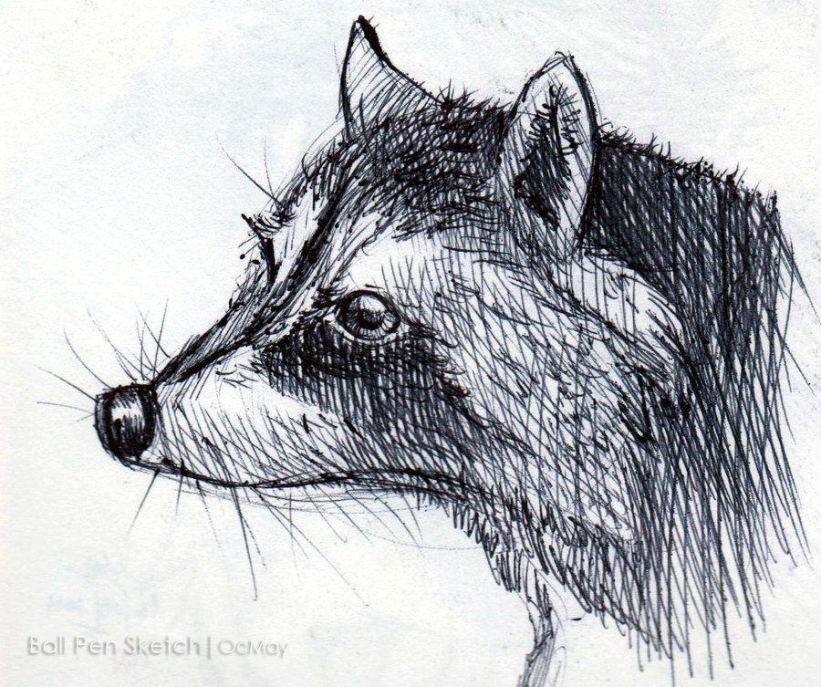 Simple pen and ink drawings of animals for Ink drawings easy