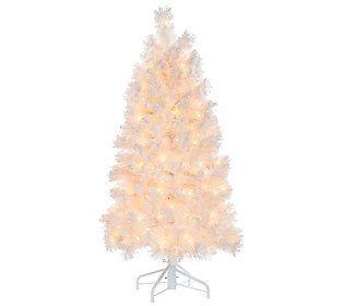 Bethlehem Lights Prelit 5' Slim Pine Snowy White Christmas ...