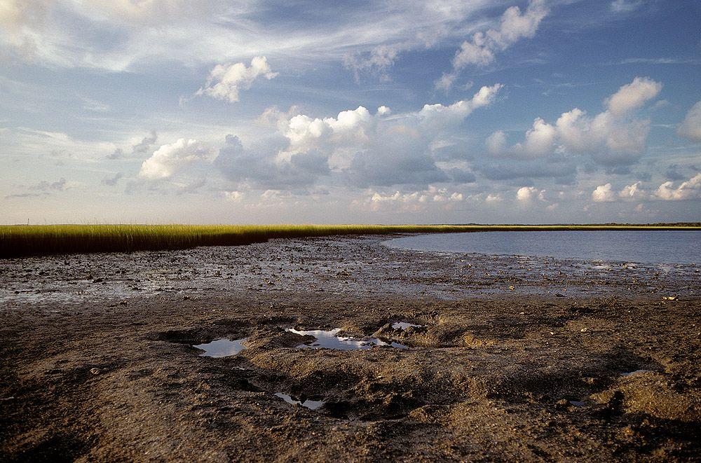 Radio Island, NC - Low Water Marsh