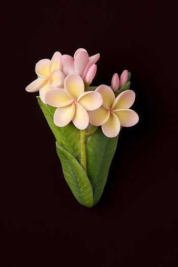 Plumeria Wall Vase Wall Vase Ceramic Flowers Clay Art Projects