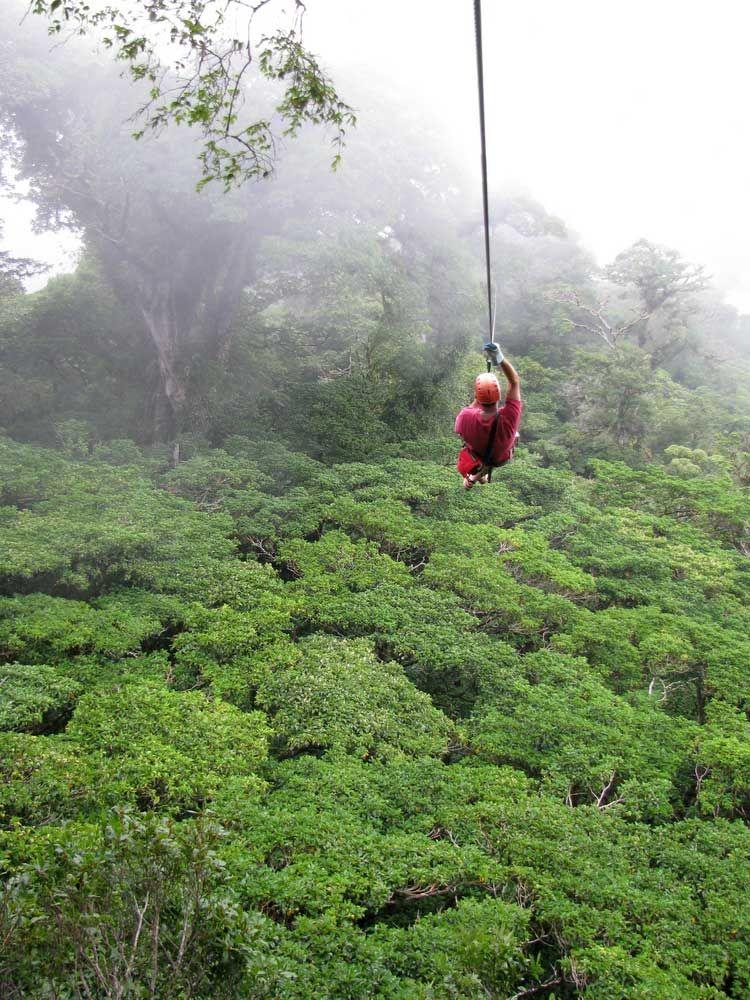 Ziplining Tours Rincon Puerto Rico Wedding Sidetrips