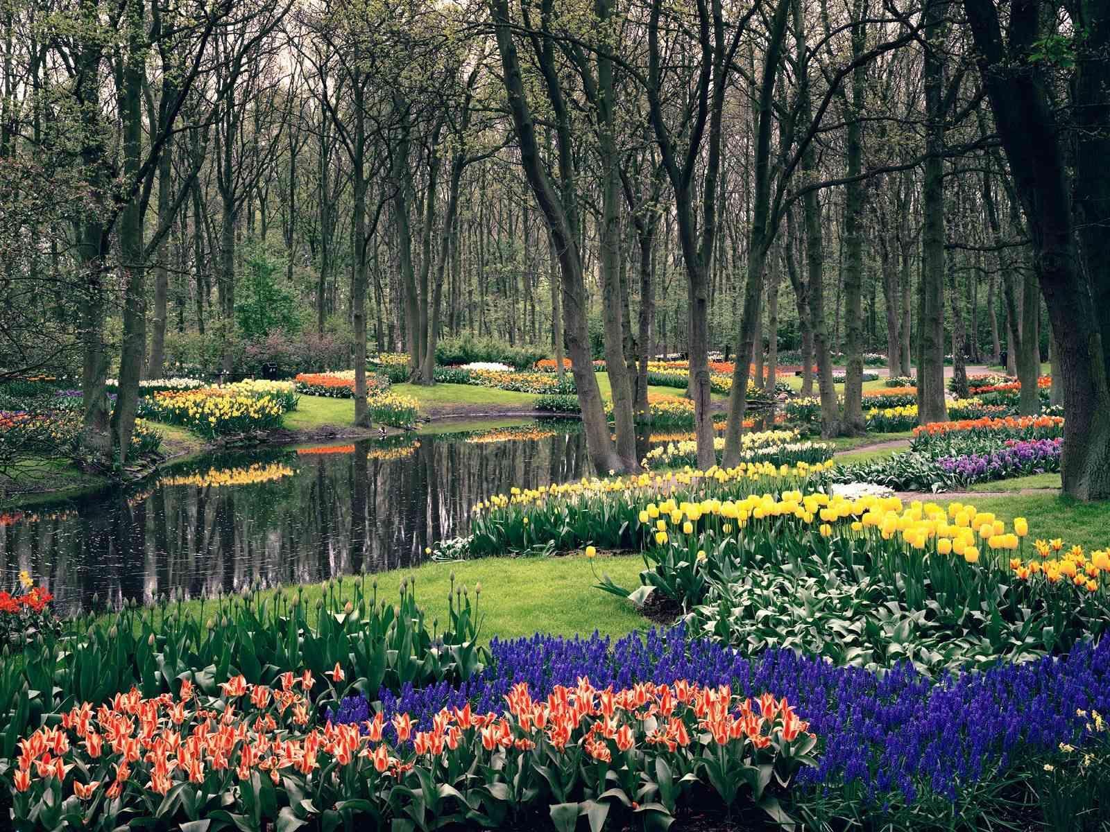 keukenhof gardens netherlands | I want to visit this place someday ...