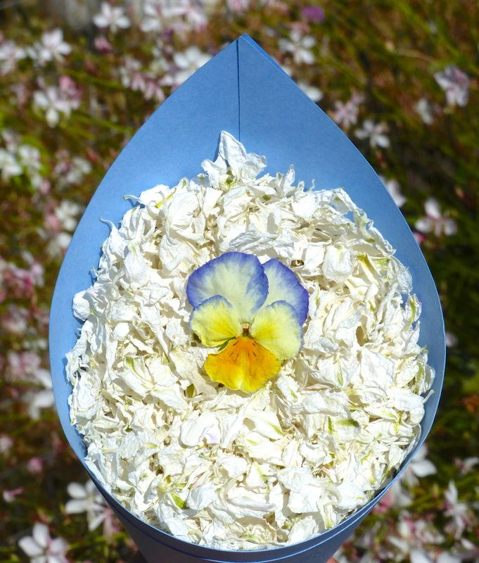 Real flower petal confetti from Floating Petals Confetti Natural