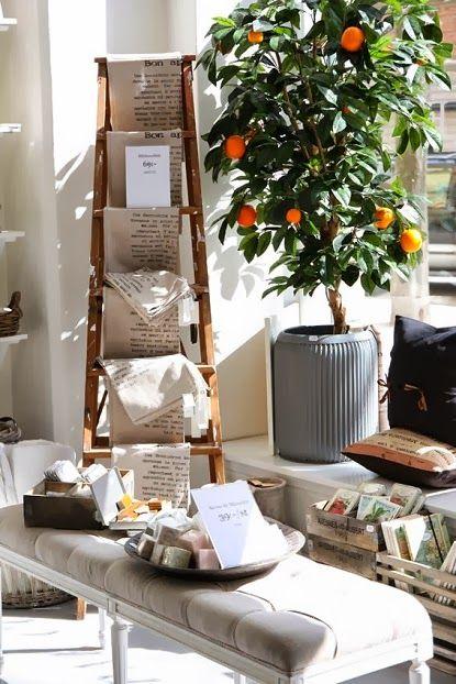 Gardening : Stunning orange trees - My Favorite Things