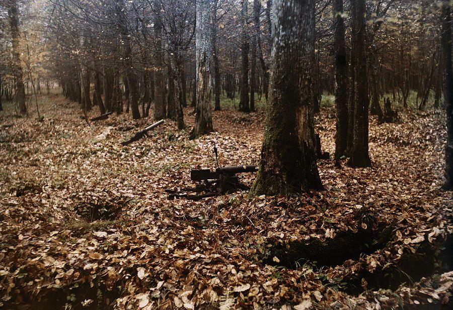 Remnants of the Battle of Belleau Wood (Bois de Belleau)  Military  ~ Bois De Belleau