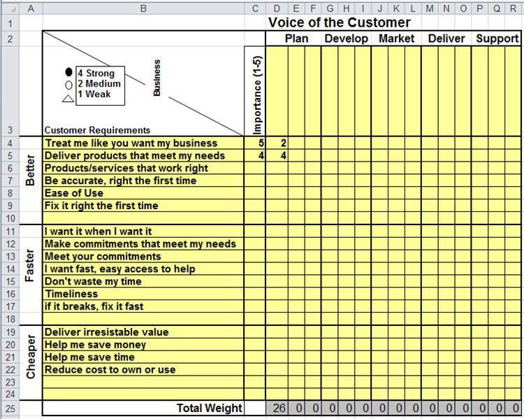 Voice Of The Customer Matrix Excel Excel