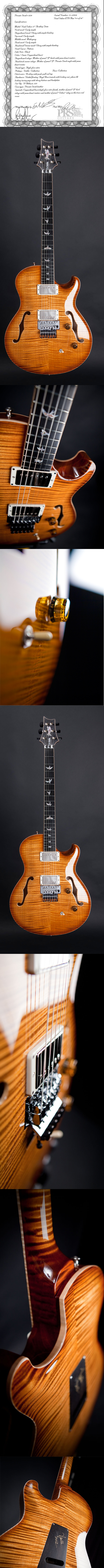 This PRS Private Stock PS3729 costs aprx $13.500,00 USD. Only 30 made in the world!