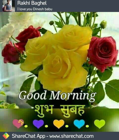 Pin By Narendra Pal Singh On Good Morning Good Morning Messages