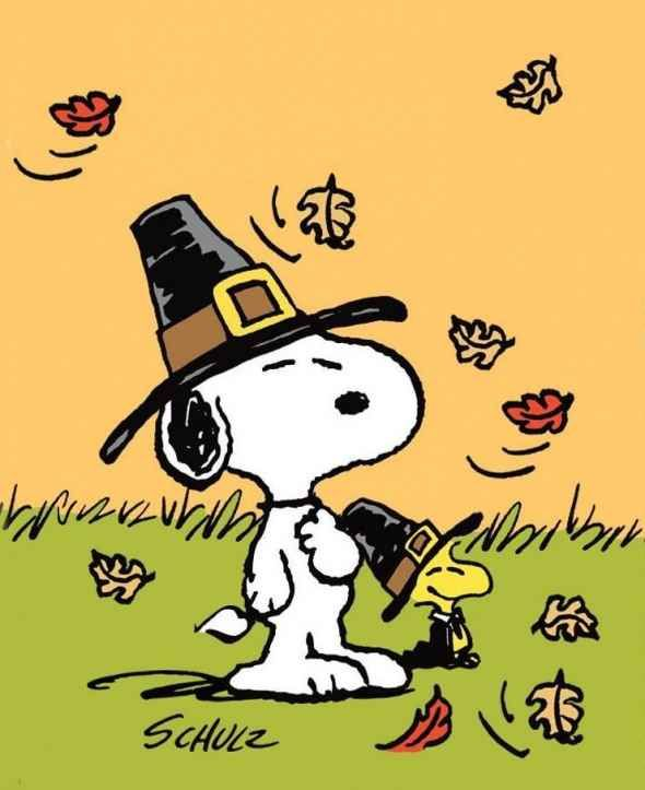 Snoopy And Woodstock Celebrating Thanksgiving Thanksgiving Snoopy Snoopy Snoopy And Woodstock