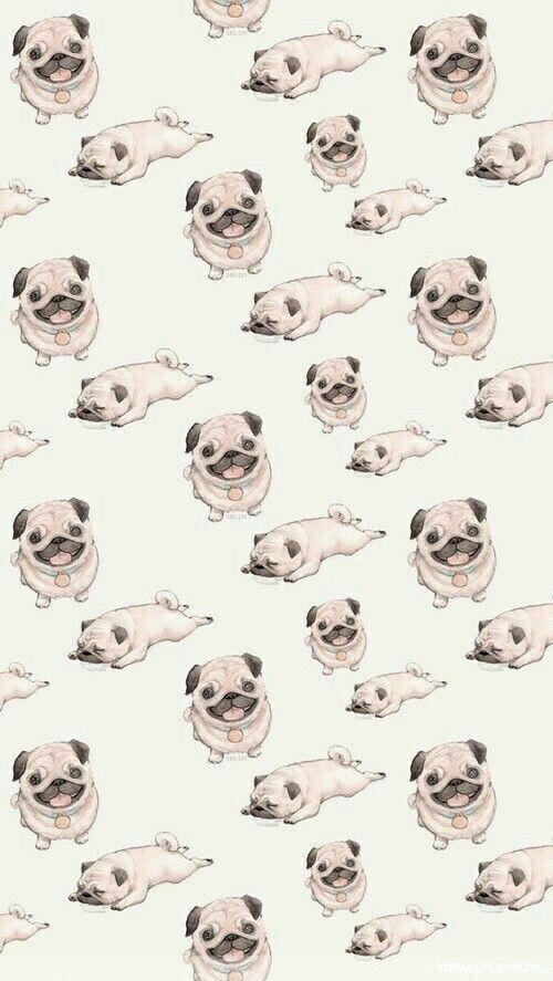 Image De Pug Dog And Wallpaper In 2019 Tumblr Wallpaper
