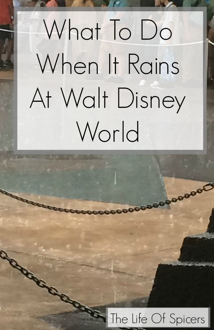 What To Do When It Rains At Disney World - The Lif