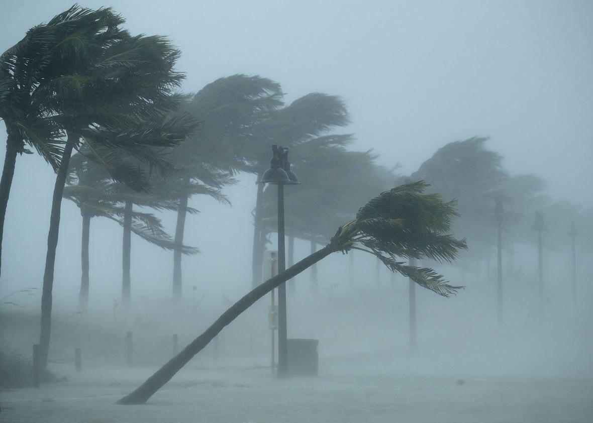 Hurricane irma damage tips for filing an insurance claim