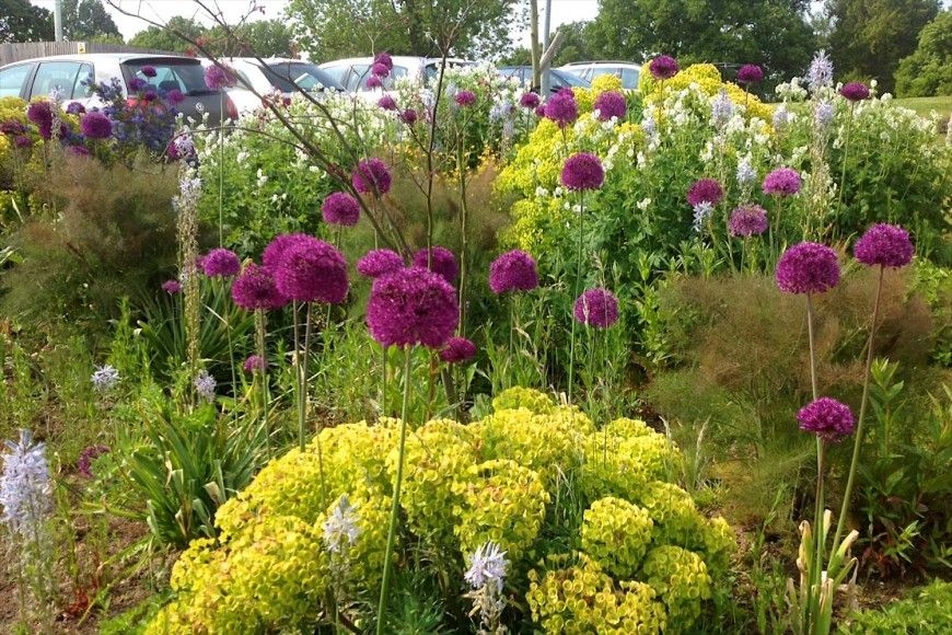 practical urban garden cranbrook kent uk jo thompson landscape and garden design